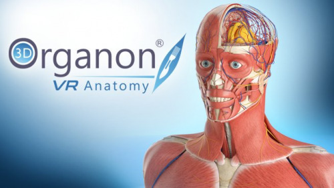 3D Organon VR Anatomy 2018