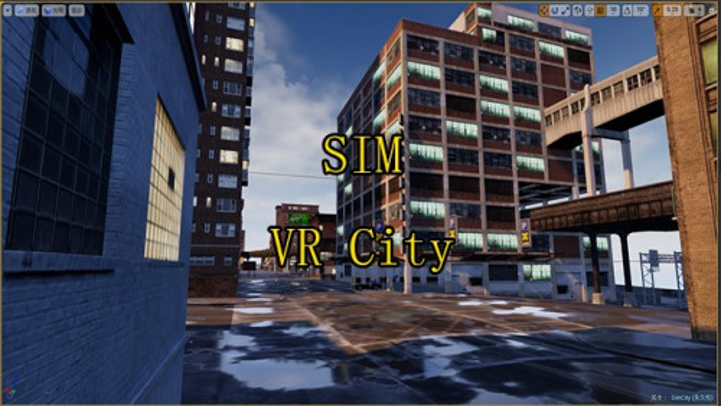 SIM VR City