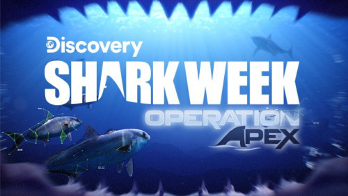 Shark Week: Operation Apex