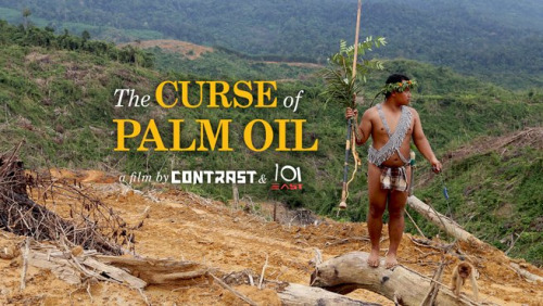 The Curse of Palm Oil