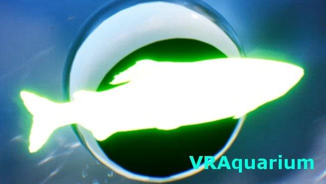 VRAquarium