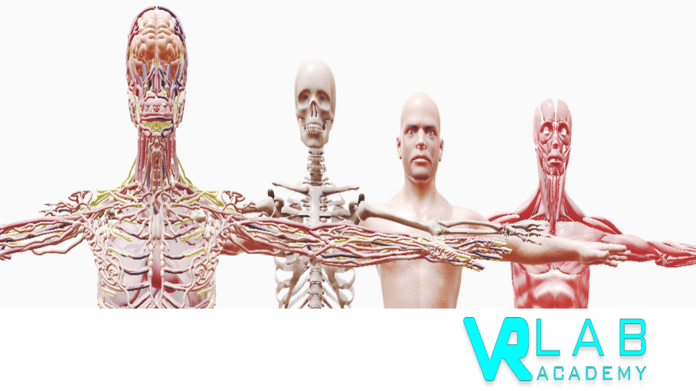 VRLab Academy : Anatomy VR