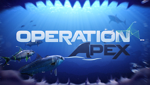 Operation Apex